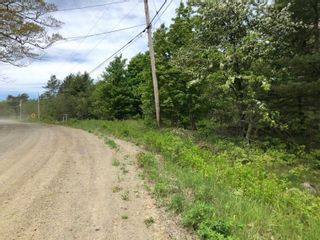 Photo 5: Lot Morganville Road in Morganville: 401-Digby County Vacant Land for sale (Annapolis Valley)  : MLS®# 202105239