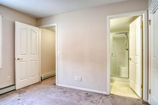 Photo 15: 3117 6818 Pinecliff Grove NE in Calgary: Pineridge Apartment for sale : MLS®# A1069420