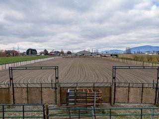 Photo 34: 1280 POWERHOUSE Road in Abbotsford: Sumas Prairie House for sale : MLS®# R2565055