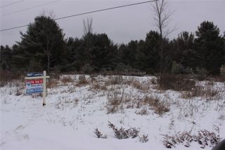 Photo 6: Lot 22 Maritime Road in Kawartha Lakes: Coboconk Property for sale : MLS®# X3413160