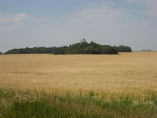 Photo 3: SE 20 30 1 W5 Highway 2A: Carstairs Residential Land for sale : MLS®# A1067588
