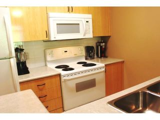 """Photo 4: 309 2763 CHANDLERY Place in Vancouver: Fraserview VE Condo for sale in """"RIVER DANCE"""" (Vancouver East)  : MLS®# V1098255"""
