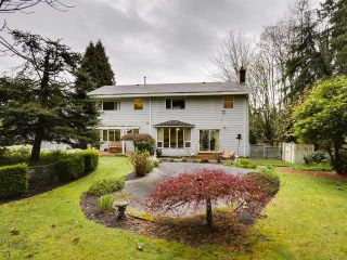 Photo 15: 1497 QUEENS Avenue in West Vancouver: Ambleside House for sale : MLS®# V1113998
