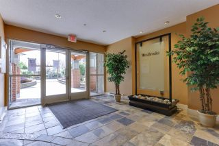 "Photo 23: 304 12020 207A Street in Maple Ridge: Northwest Maple Ridge Condo for sale in ""WESTBROOKE"" : MLS®# R2560776"