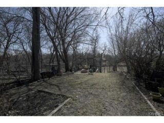 Photo 14: 902 Palmerston Avenue in WINNIPEG: West End / Wolseley Residential for sale (West Winnipeg)  : MLS®# 1508703