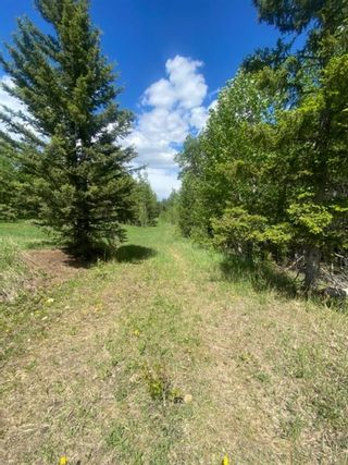 Photo 5: 5.78 Acres Parkins Road: Rural Foothills County Land for sale : MLS®# A1086953