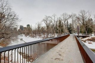 Photo 23: 218 305 18 Avenue SW in Calgary: Mission Apartment for sale : MLS®# A1059697