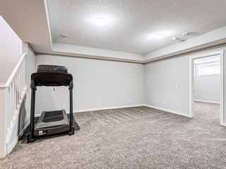 Photo 29: 417 Chinook Gate Square SW: Airdrie Detached for sale : MLS®# A1096458