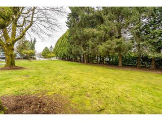 """Photo 33: 186 7790 KING GEORGE Boulevard in Surrey: East Newton Manufactured Home for sale in """"Crispen Bays"""" : MLS®# R2560382"""