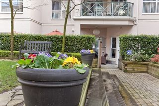 """Photo 17: 119 511 W 7TH Avenue in Vancouver: Fairview VW Condo for sale in """"BEVERLEY GARDENS"""" (Vancouver West)  : MLS®# V818310"""