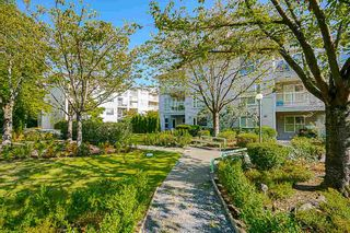 """Photo 19: 212 2965 HORLEY Street in Vancouver: Collingwood VE Condo for sale in """"CHERRY HILL"""" (Vancouver East)  : MLS®# R2111897"""