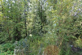 Photo 5: Lot 91 Anglemont Way in Anglemont: Land Only for sale (Shuswap)  : MLS®# 10069930