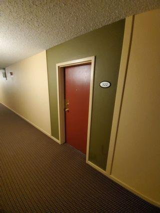 Photo 5: 322 3610 43 Avenue in Edmonton: Zone 29 Condo for sale : MLS®# E4255175