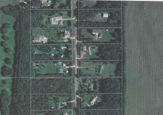 Photo 42: 4502 22 Street: Rural Wetaskiwin County House for sale : MLS®# E4241522