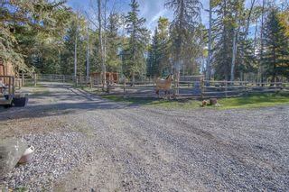 Photo 38: 234133 Range Rd 52 in Rural Rocky View County: Rural Rocky View MD Detached for sale : MLS®# A1149125
