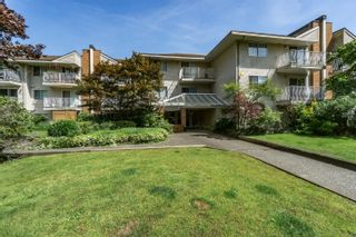 """Photo 1: 206 1187 PIPELINE Road in Coquitlam: New Horizons Condo for sale in """"PINE COURT"""" : MLS®# R2616614"""