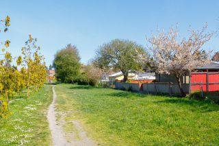 Photo 52: 1774 Emerson St in : Vi Jubilee House for sale (Victoria)  : MLS®# 874334