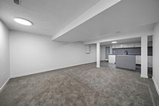 Photo 31: 63 Whiteram Court NE in Calgary: Whitehorn Detached for sale : MLS®# A1107725
