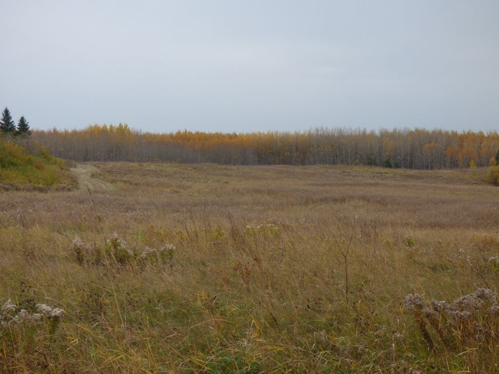 Photo 14: Photos: N1/2 SE19-57-1-W5: Rural Barrhead County Rural Land/Vacant Lot for sale : MLS®# E4217154