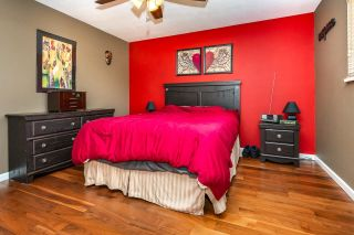 Photo 8: 24991 SMITH Avenue in Maple Ridge: Websters Corners House for sale : MLS®# R2618143