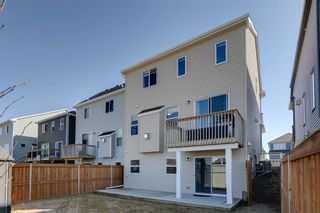 Photo 35: 81 Windford Park SW: Airdrie Detached for sale : MLS®# A1095520