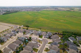 Photo 48: 17622 111 Street in Edmonton: Zone 27 House for sale : MLS®# E4254561
