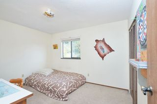 Photo 18: 3801 LONSDALE Avenue in North Vancouver: Upper Lonsdale House for sale : MLS®# R2559097