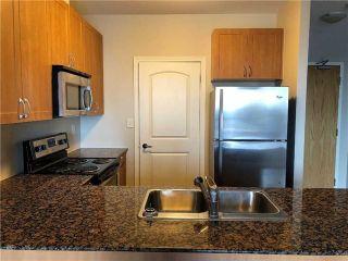 Photo 3: 407 383 Main Street in Milton: Old Milton Condo for lease : MLS®# W4055105
