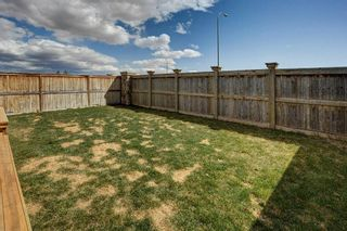 Photo 28: 180 CRANBERRY Circle SE in Calgary: Cranston Detached for sale : MLS®# C4222999