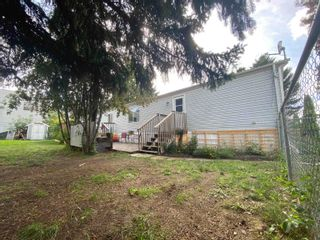 Photo 18: 250 305 Calahoo Road: Spruce Grove Mobile for sale : MLS®# E4262768