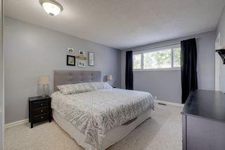 Photo 10: 48 GROVELAND Road: Sherwood Park House for sale : MLS®# E4229448