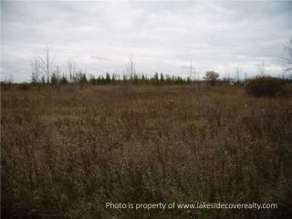Photo 19: 2489 Concession Road 3 Road in Ramara: Brechin Property for sale : MLS®# X3371303