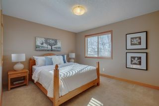 Photo 24: 2003 41 Avenue SW in Calgary: Altadore Detached for sale : MLS®# A1071067