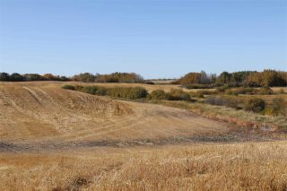 Photo 8: TWP 495 RR 232: Rural Leduc County Rural Land/Vacant Lot for sale : MLS®# E4216268