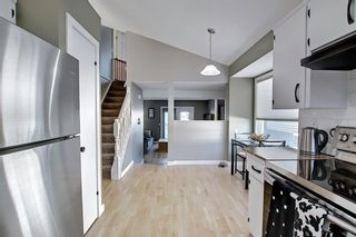 Photo 13: 132 Ventura Way NE in Calgary: Vista Heights Detached for sale : MLS®# A1081083