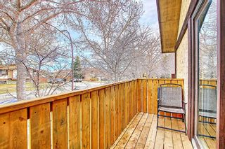 Photo 10: 1137 Berkley Drive NW in Calgary: Beddington Heights Semi Detached for sale : MLS®# A1136717
