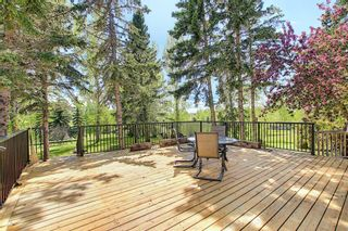 Photo 38: 97 Bearspaw Meadows Way NW in Rural Rocky View County: Rural Rocky View MD Detached for sale : MLS®# A1149296
