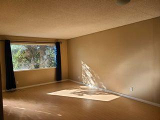 Photo 7: 5703 107 Street in Edmonton: Zone 15 House for sale : MLS®# E4248797