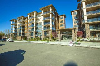 """Photo 21: 207 20673 78 Avenue in Langley: Willoughby Heights Condo for sale in """"Grayson"""" : MLS®# R2530070"""