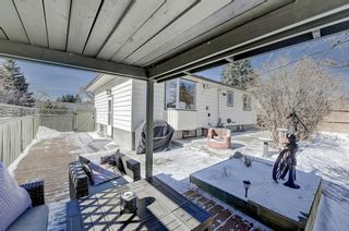 Photo 42: 716 Thorneycroft Drive NW in Calgary: Thorncliffe Detached for sale : MLS®# A1089145