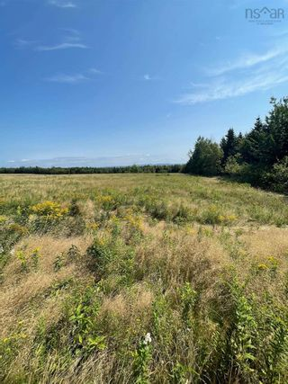 Photo 3: Lot Little Harbour Road in Kings Head: 108-Rural Pictou County Vacant Land for sale (Northern Region)  : MLS®# 202122504