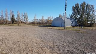 Photo 3: Revenue Acreage in Tramping Lake: Residential for sale (Tramping Lake Rm No. 380)  : MLS®# SK823639