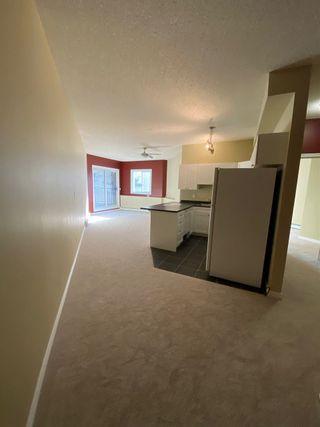 Photo 5: 105 10118 95 Street in Edmonton: Zone 13 Condo for sale : MLS®# E4231734