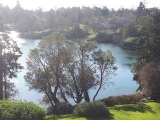 Photo 25: 407 105 E Gorge Rd in : Vi Burnside Condo for sale (Victoria)  : MLS®# 867569