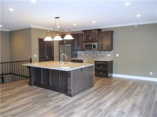 Photo 2: 10458 245TH Street in Maple Ridge: Albion House for sale : MLS®# V1078579
