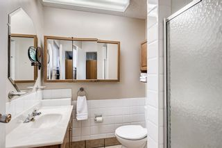 Photo 20: 459 Queen Charlotte Road SE in Calgary: Queensland Detached for sale : MLS®# A1122590
