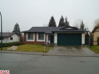 Photo 1: 2821 MCBRIDE Street in Abbotsford: Abbotsford East House for sale : MLS®# F1102923