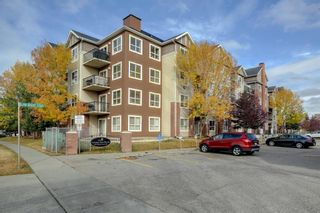 Photo 1: 4104 73 Erin Woods Court SE in Calgary: Erin Woods Apartment for sale : MLS®# A1042999