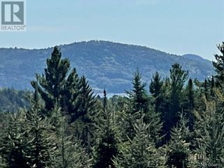 Photo 39: - Saint David Ridge in St. Stephen: Vacant Land for sale : MLS®# NB063465