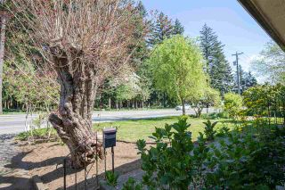 Photo 29: 32740 BEVAN Avenue in Abbotsford: Abbotsford West House for sale : MLS®# R2569663